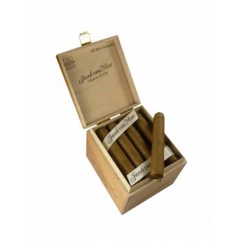 Zigarillos Jacob van Meer Mini Robusto