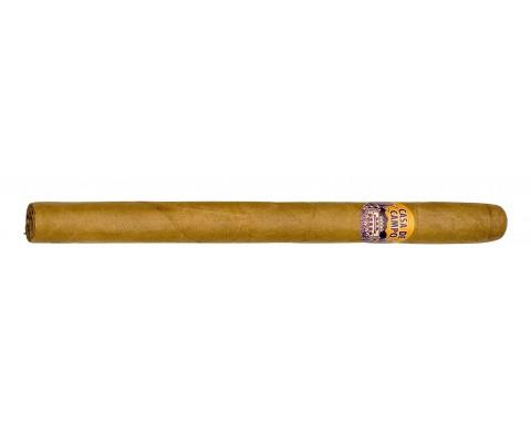 Zigarren Casa de Campo Pinos